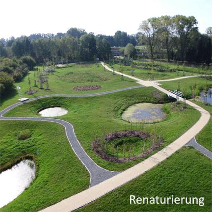 Moorgarten