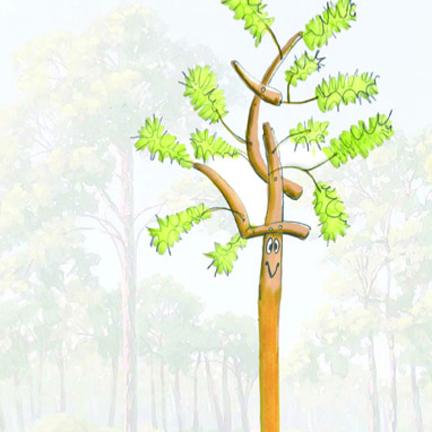The Humble Pine